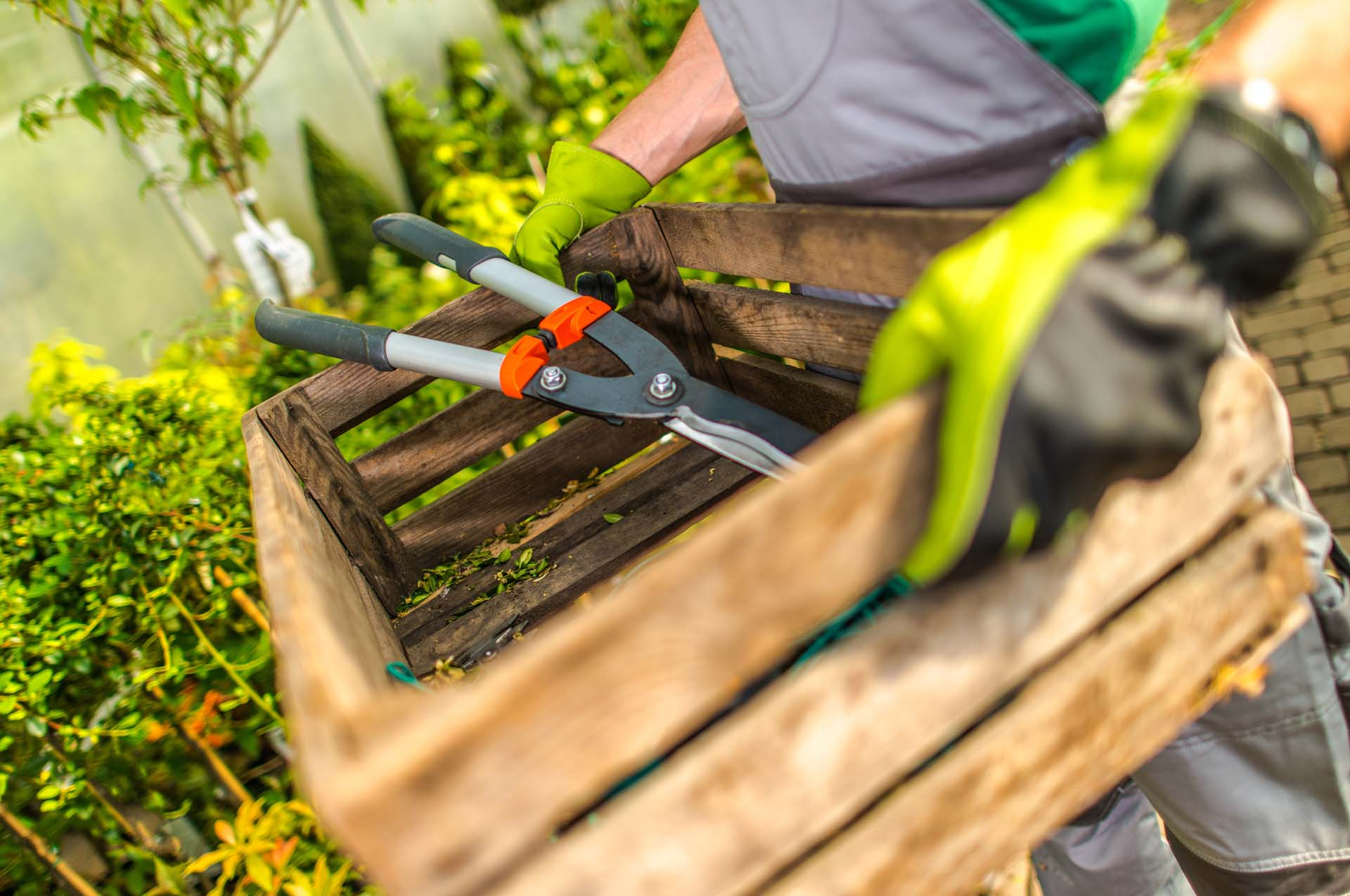 Gardenia Work Time